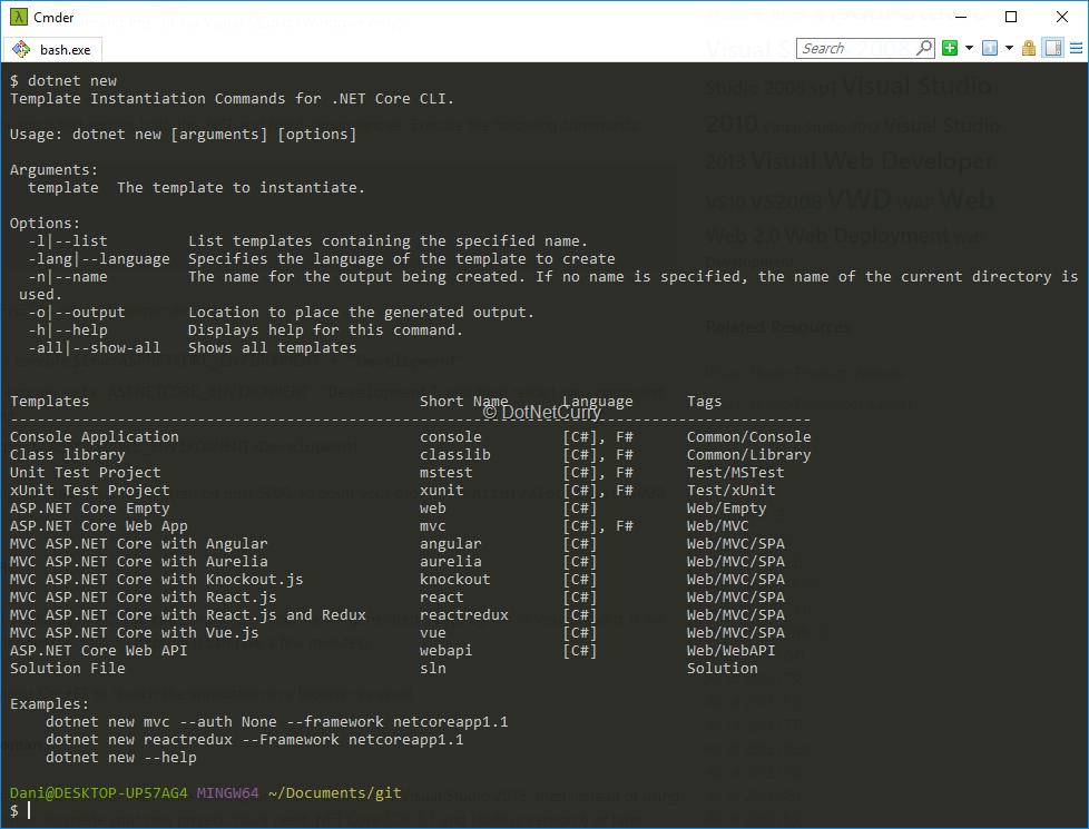 Debugging ASP.NET Core SPA in Visual Studio Code | DotNetCurry