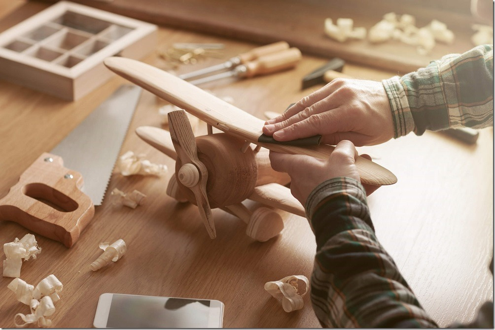 software-craftsman