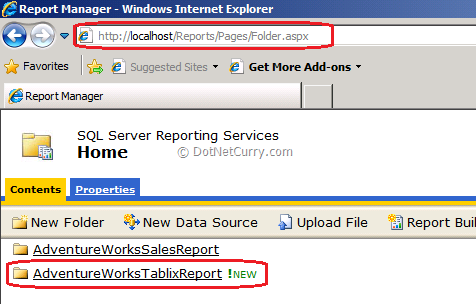 Report Server Manager