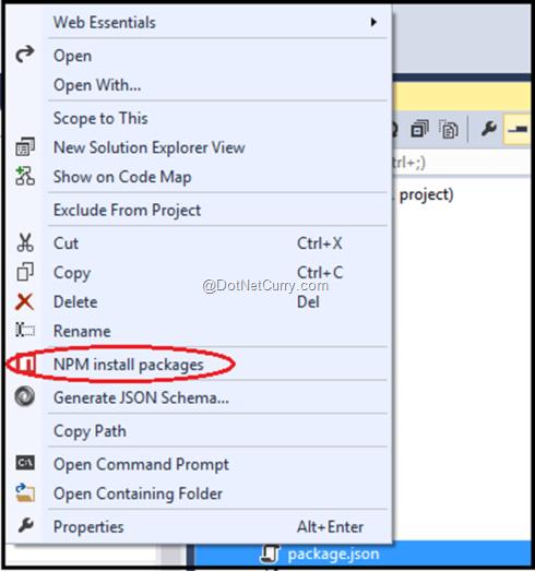 npm-install-vs-2013